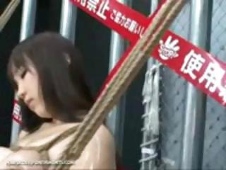 Intense Japanese Device Suspension Thraldom Sex